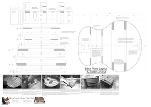 Grand Auditorium 12-String Guitar Plans Plans Back Layout & Back Brace Layouts