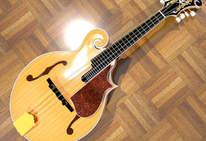 F5 Lloyd Loar Mandolin 3D CNC Files. Overall View 3