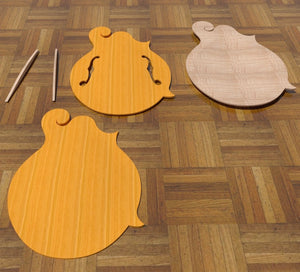 F5 Lloyd Loar Mandolin 3D CNC Files. Top and Back Set