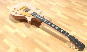 Les Paul Standard Single Cut Overall 2