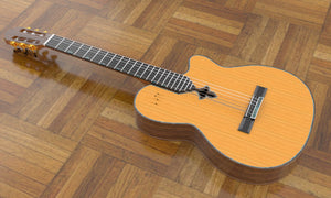 Sand Rosewood Fleur-de-lis Nylon Electric Guitar, Overall View 3