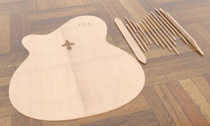 Sand Rosewood Fleur-de-lis Nylon Electric Guitar, Top Plate & Top Braces Linear