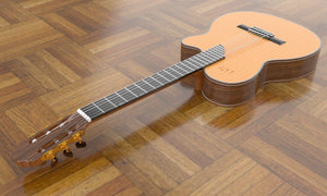 Sand Rosewood Nylon String Electric Guitar, Overall 2