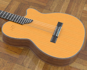 Electric Nylon Guitar Plans - Sand Rosewood
