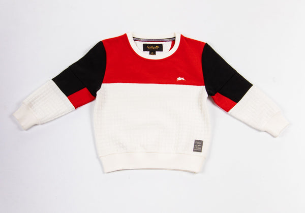 Jeremy | Boys Crew Neck Color Block Top