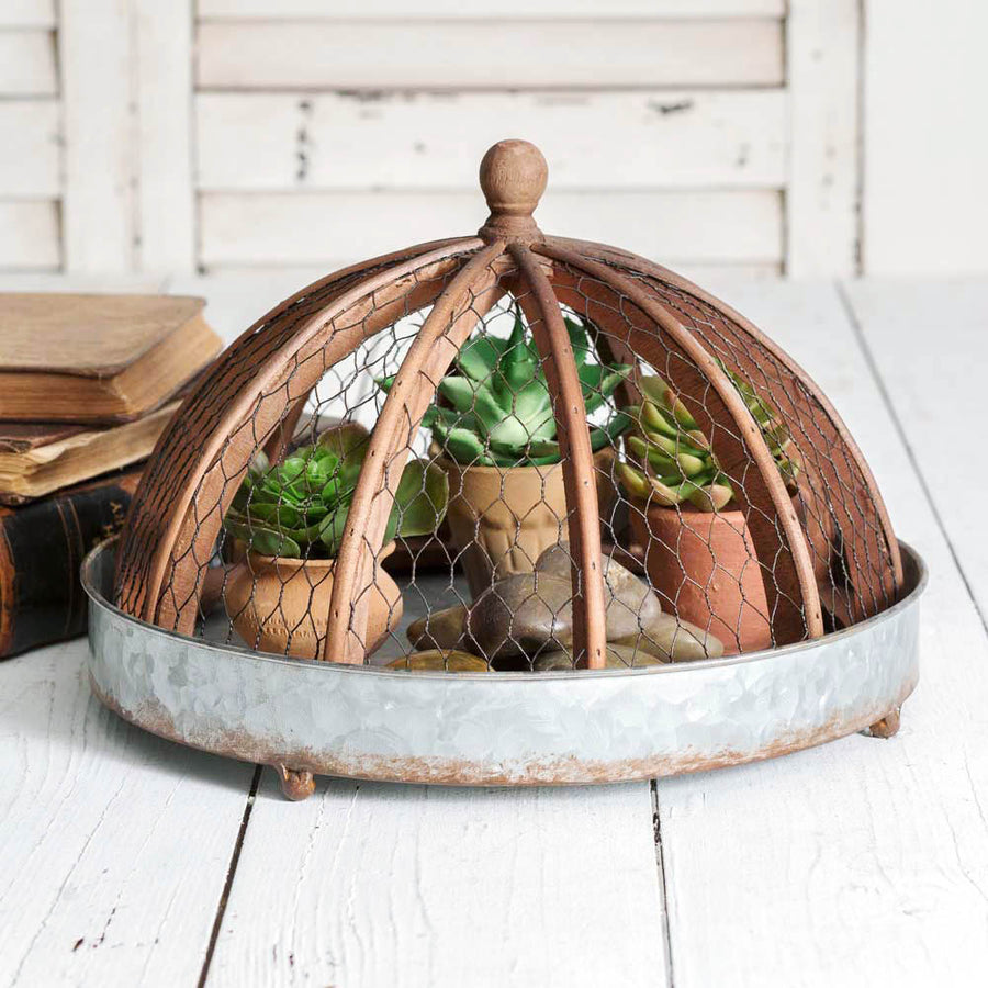 Round Tray with Chicken Wire Cloche - Charming Wood Home