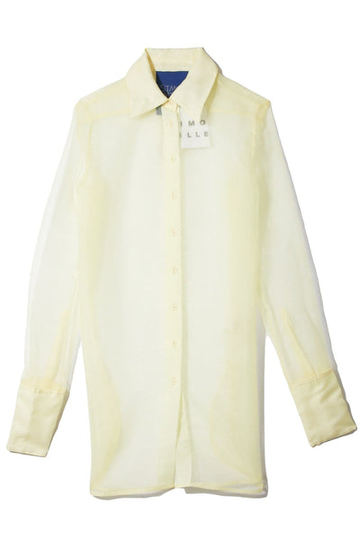 Rowena Top in Sea Lemon