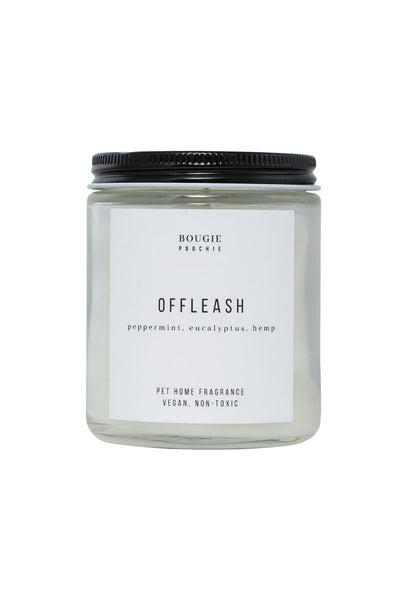 Offleash 16 oz Candle