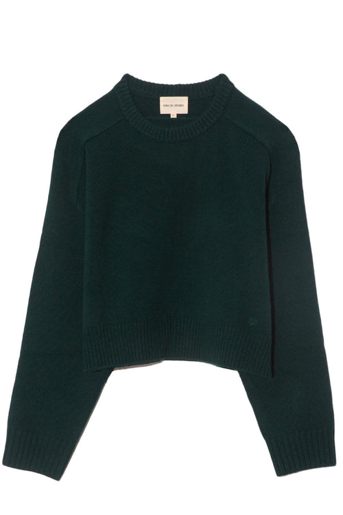 New Bruzzi Sweater in Green