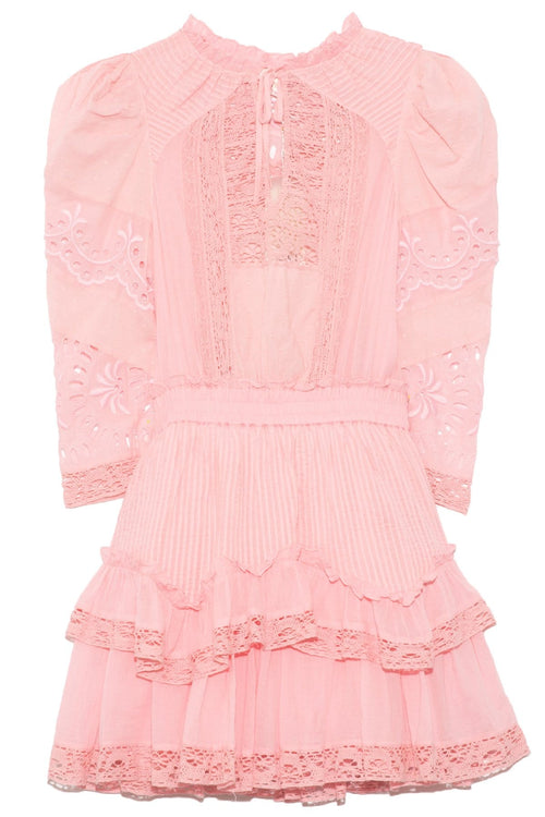 Isidore Dress in Pink Grace