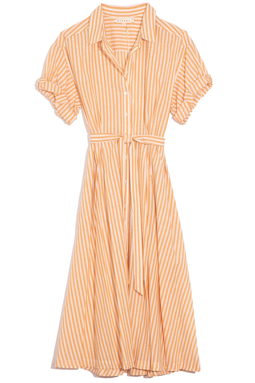 Caylin Dress in Sunshine