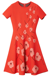 Short Sleeve Fit and Flare Dress in Paprika Multi
