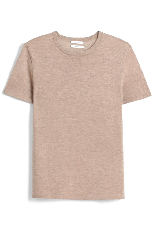 Cashmere Short Sleeve Knit Top in Taupe