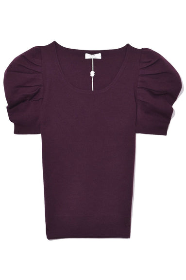 Short Sleeve Scoop Neck Sweater in Plum