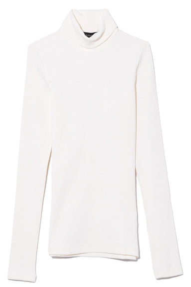 The Rib Turtleneck in Ivory
