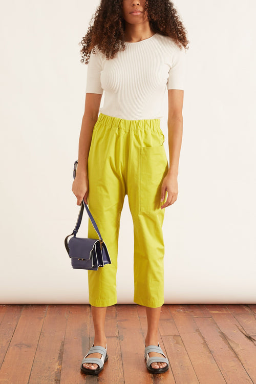 Punch Cropped Pant in Anise