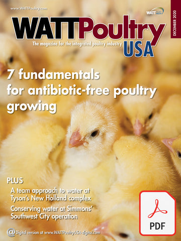 Fundamentals of Antibiotic-free Poultry Growing 2020