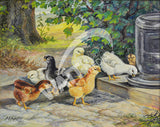 Chicks Heritage Poultry Painting Canvas Print