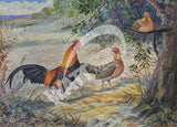 Jungle Fowl - Gallus Bankiva Heritage Poultry Painting Canvas Print