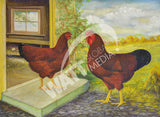Rose Comb Rhode Island Reds Heritage Poultry Breed Canvas Print