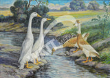 Runner Ducks Heritage Poultry Painting Canvas Print