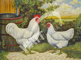 White Jersey Giants Heritage Poultry Painting Canvas Print