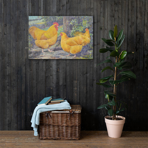 Buff Orpingtons Heritage Poultry Breed Canvas Print