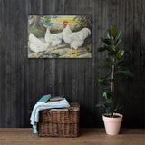 White Plymouth Rocks Heritage Poultry Painting Canvas Print