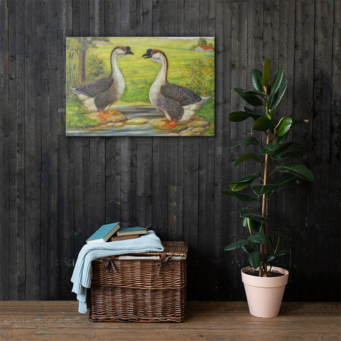 African Geese Heritage Poultry Painting Canvas Print