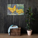 Buff Plymouth Rocks Heritage Poultry Painting Canvas Print