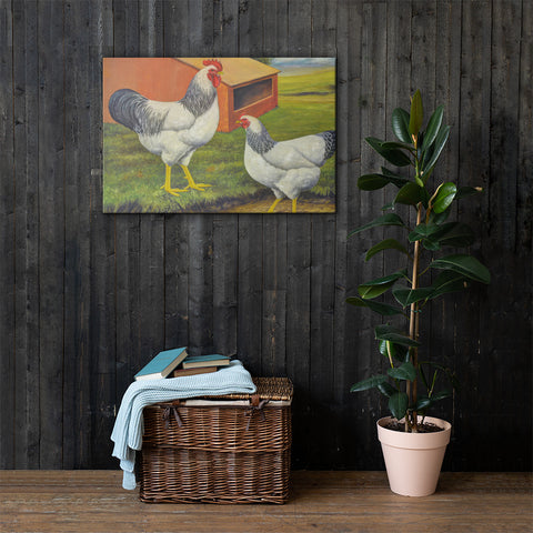 Columbian Plymouth Rocks Heritage Poultry Painting Canvas Print