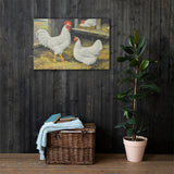 White Hollands Heritage Poultry Painting Canvas Print