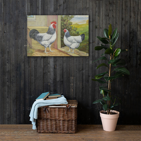 Light Sussex Heritage Poultry Painting Canvas Print