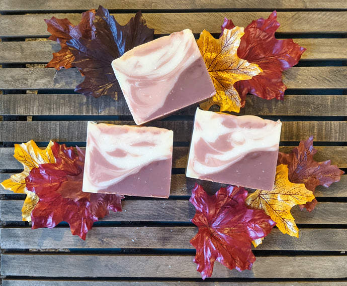 Pumpkin Coconut Cream Artisan Soap Bar