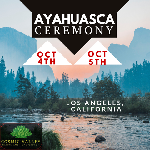California, US: Ayahuasca Ceremony October 4th-6th ($799 Full Donation)