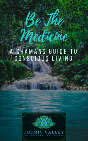 Be The Medicine: A Shamans Guide to Conscious Living