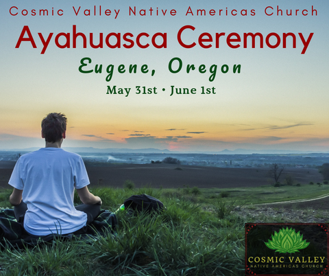 US Ayahuasca Indoor Ceremony May 31st & June 1st ($350 Full Donation)