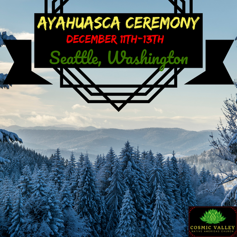Seattle, WA: US Ayahuasca Ceremony December 11th-13th 2020