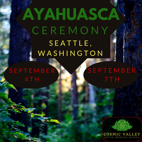 Washington, US: Ayahuasca Ceremony September 6th- 7th ($599 Full Donation) (SOLD OUT)