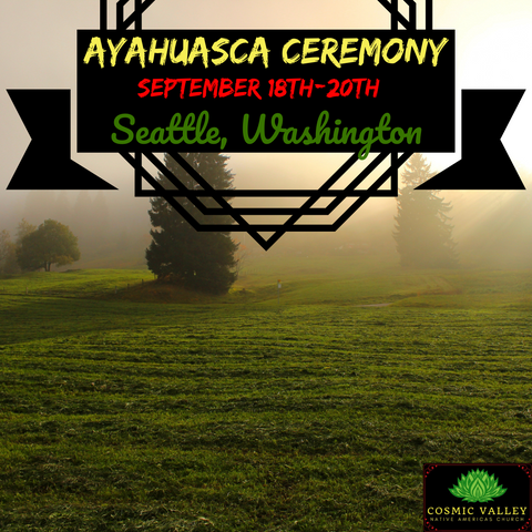 Seattle, WA: US Ayahuasca Ceremony September 18th-20th 2020