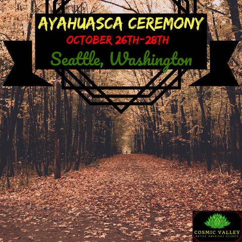 Seattle, WA: US Ayahuasca Ceremony October 26th-28th 2020