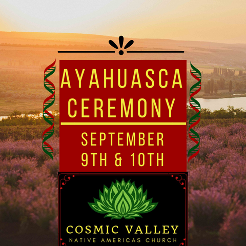 Washington, US: Ayahuasca Ceremony September 9th-10th ($599 Full Donation) (SOLD OUT)