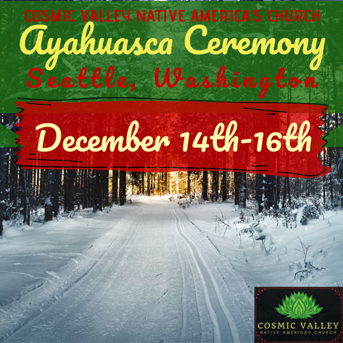 Seattle, WA: US Ayahuasca Ceremony December 14th-16th 2020 (FULL)