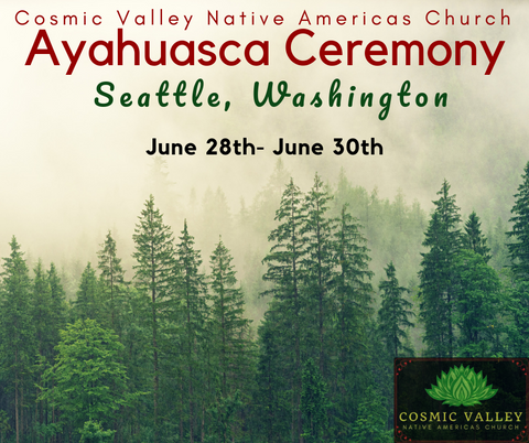 US Ayahuasca Indoor Ceremony June 28th & 29th ($200 Full Donation)