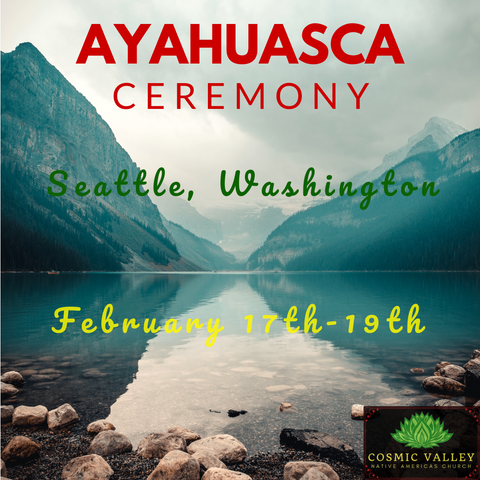 Seattle, WA: US Ayahuasca Ceremony February 17th-19th 2020 ($499 Full Donation)