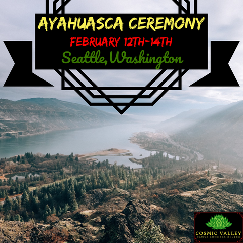 (FULL) Seattle, WA: US Ayahuasca Ceremony February 12th-14th 2021