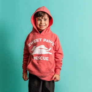 Youth Special Blend Raglan Hooded Sweatshirt Dog