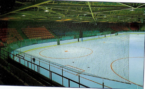 Rink Protective Netting