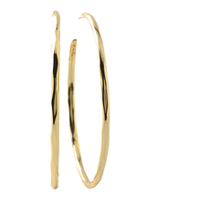 Load image into Gallery viewer, Gold Round Hoop Earrings