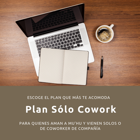 Plan mensual full time solo Cowork